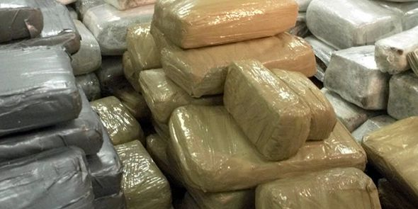 The DEA needs someone to burn 1,000 pounds of marijuana an hour, but it's probably not you