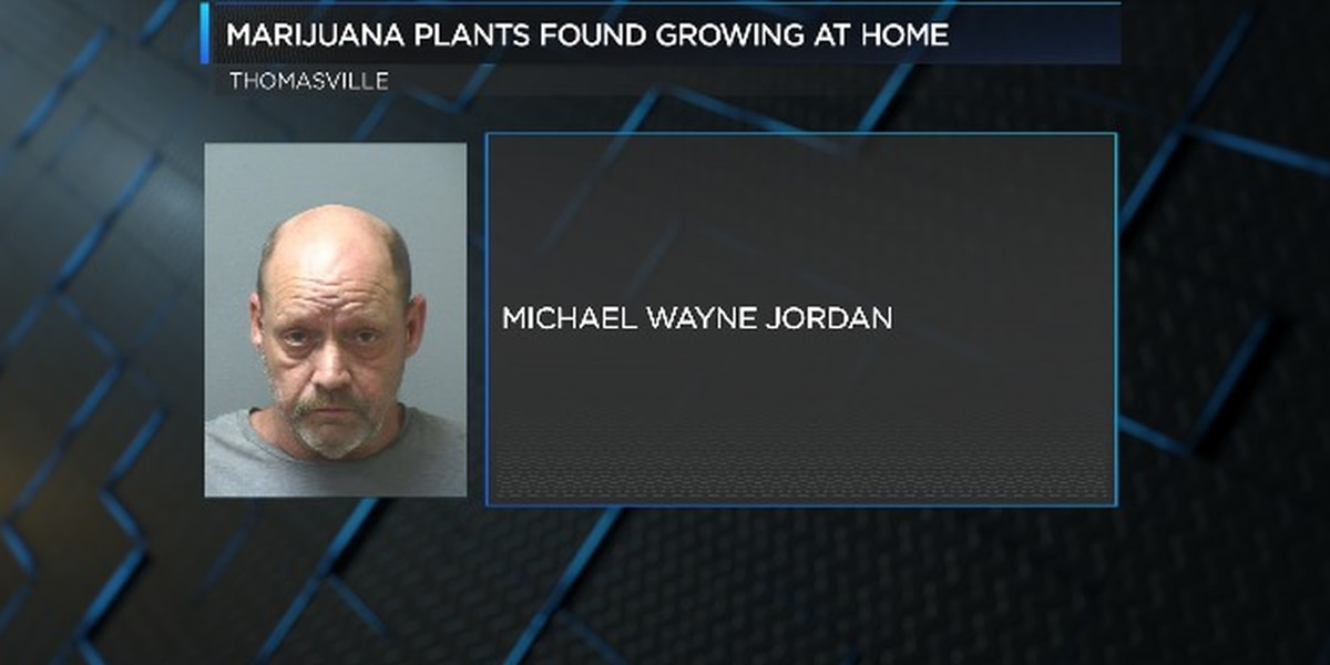 Man arrested after police find pot growing at home