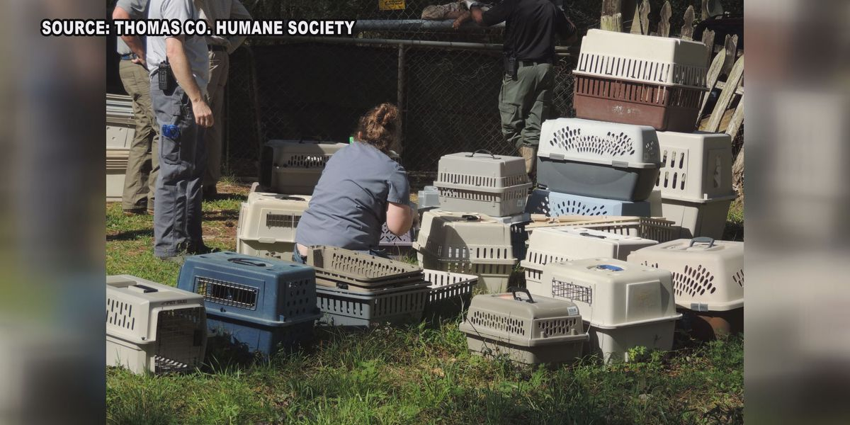 South Ga. humane society sued for seizing dogs