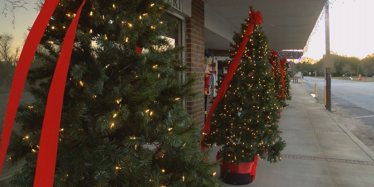 Downtown Warwick gets Christmas decorations for the first time ever