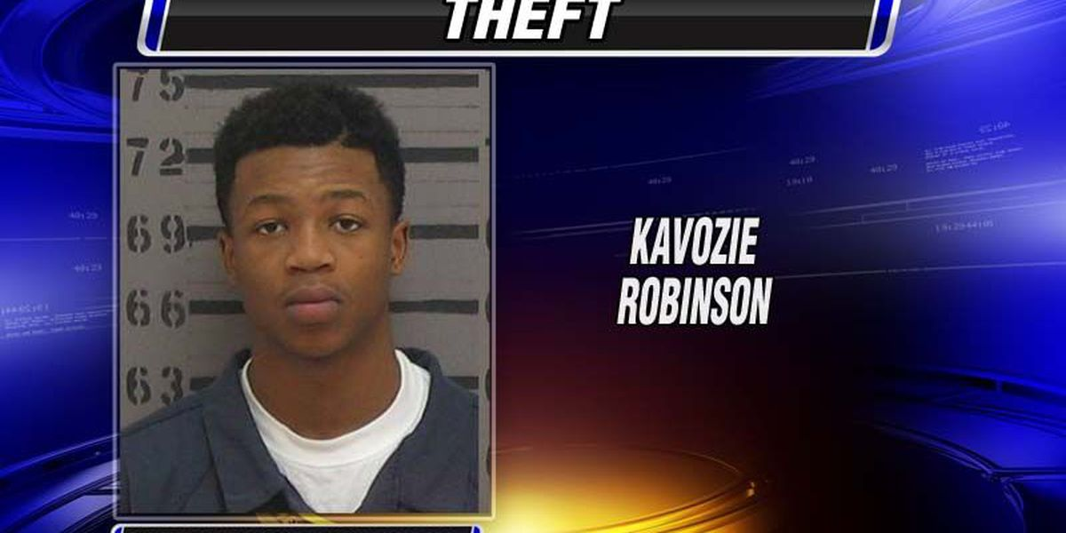 Albany teen charged with thefts