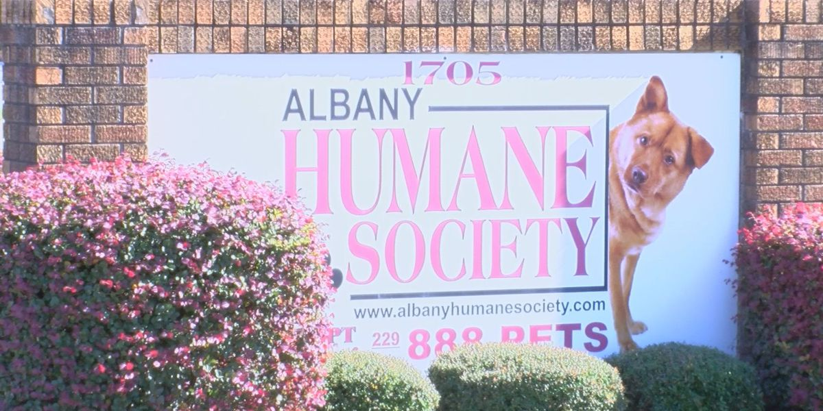 Family helps surrounding humane societies in honor of Albany homicide victim