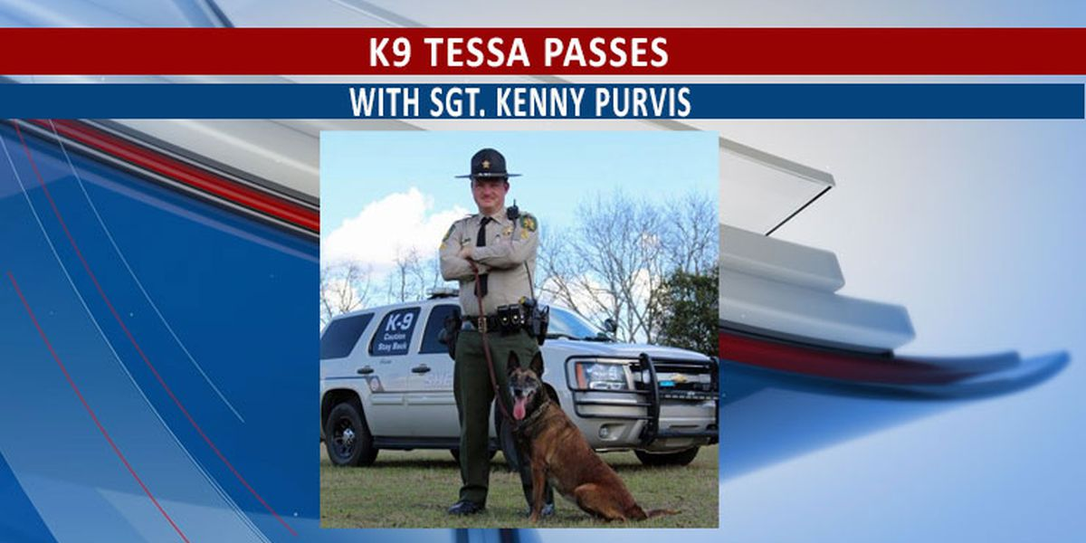 Crisp Co. police dog crosses rainbow bridge