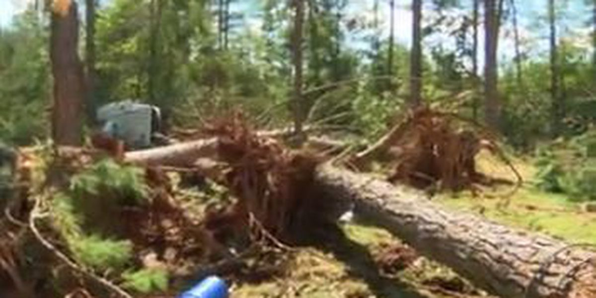 Hurricane Michael causes wide-spread damage in Randolph County, GA