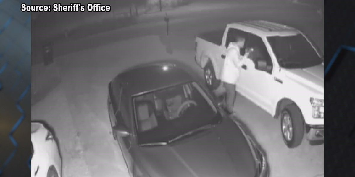 Surveillance video helps catch suspected Lowndes Co. crook