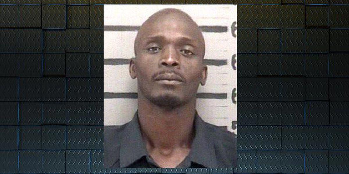 Albany burglary suspect captured by homeowner's family