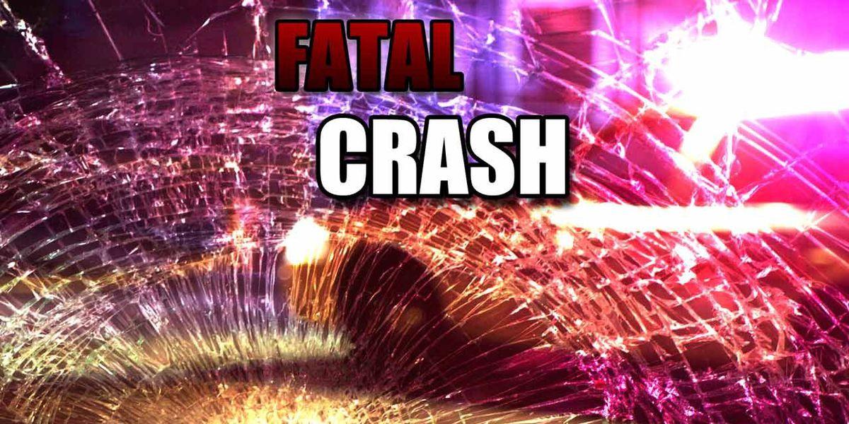 1 dead in Moultrie crash
