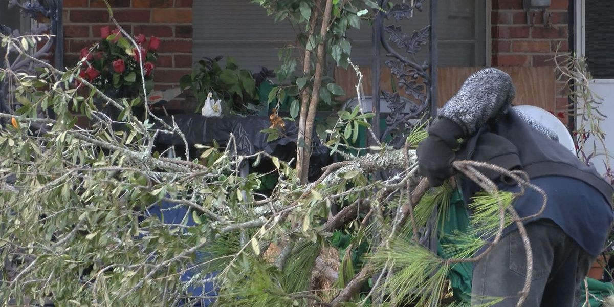 Storm cleanup continues in Central Albany