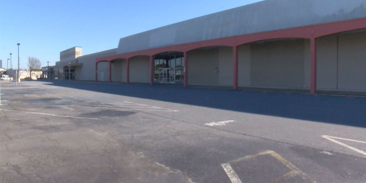 Five potential new businesses filling old Kmart shopping center