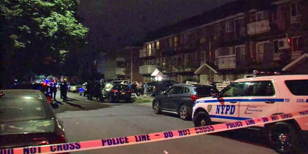 Nursery worker stabs 3 infants, 2 adults in New York, police say