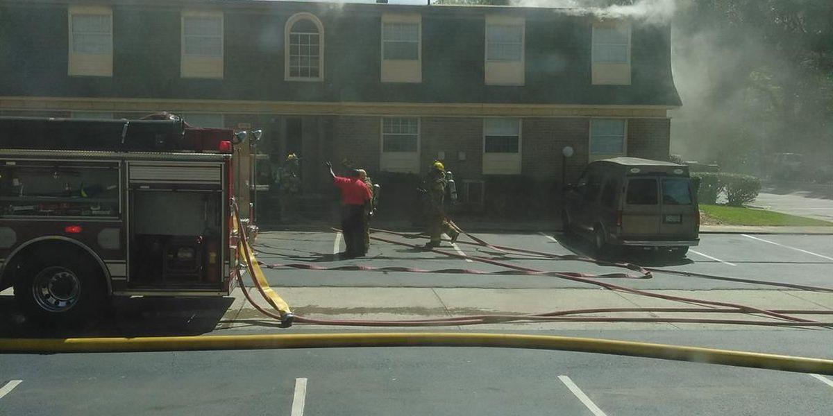 Fire blazes through Albany apartment complex