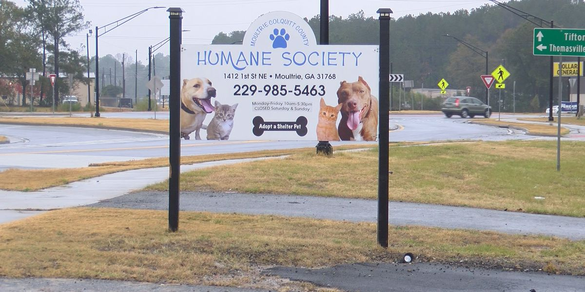 Moultrie-Colquitt Co. Humane Society hosts 'Stuff the Van' for supply donations