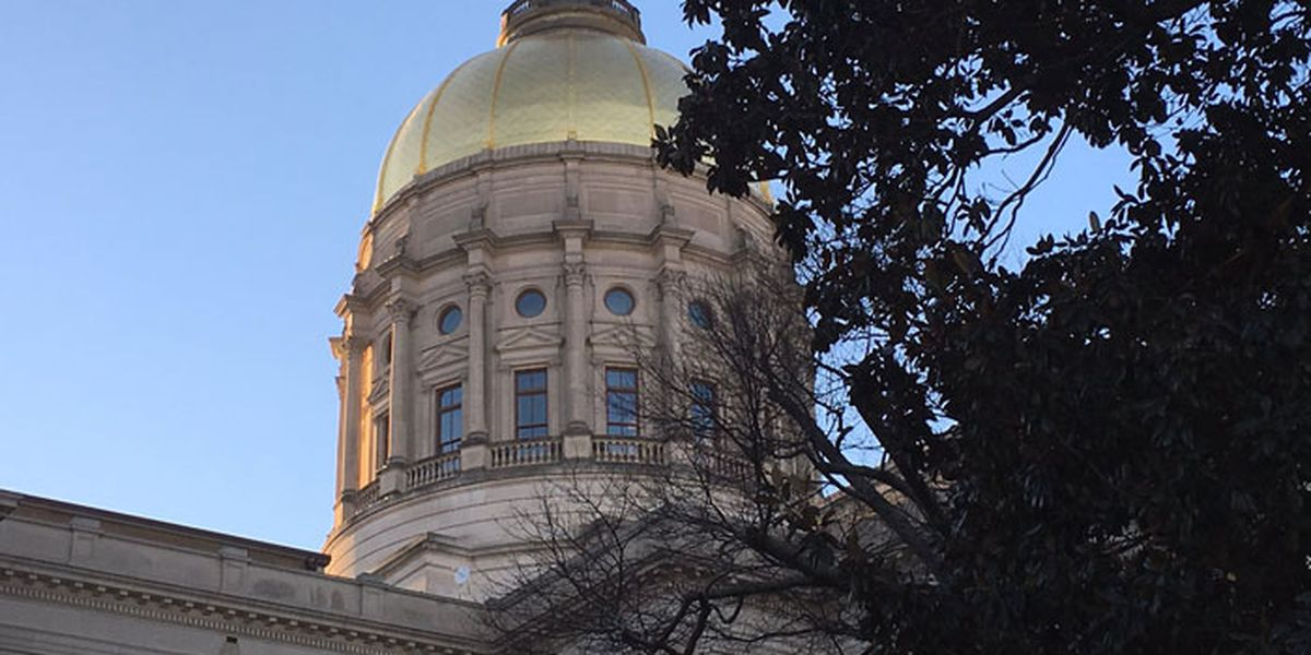 Senate passes Georgia budget changes aiding K-12 and health