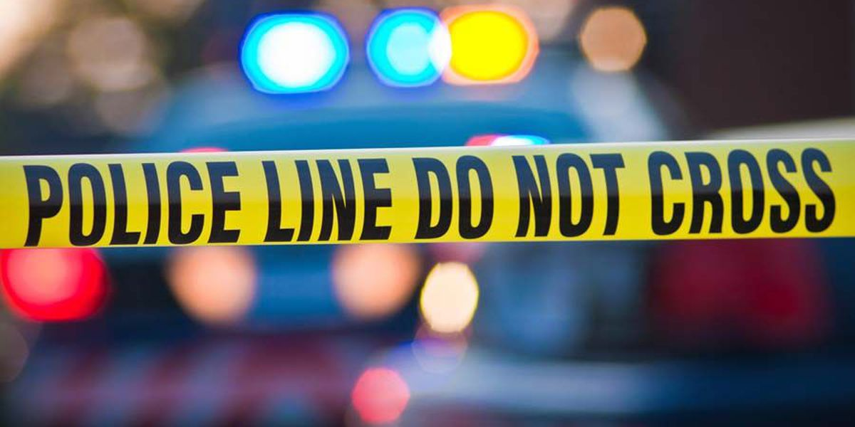 1 in custody after armed robbery in Sylvester