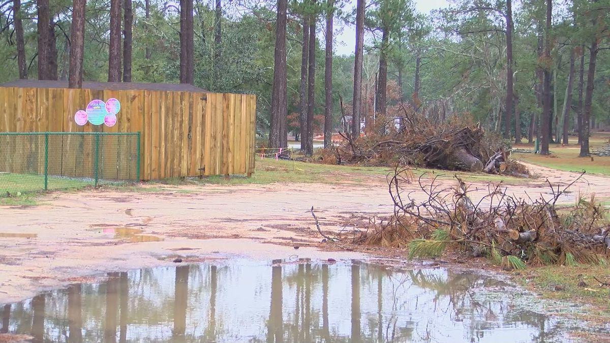 Chehaw Asks For Volunteers To Help Clean Up Storm Debris