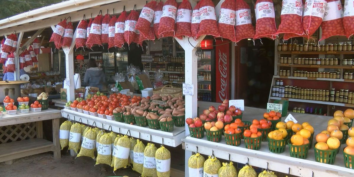 Farmers markets provide mutually beneficial relationship for communities