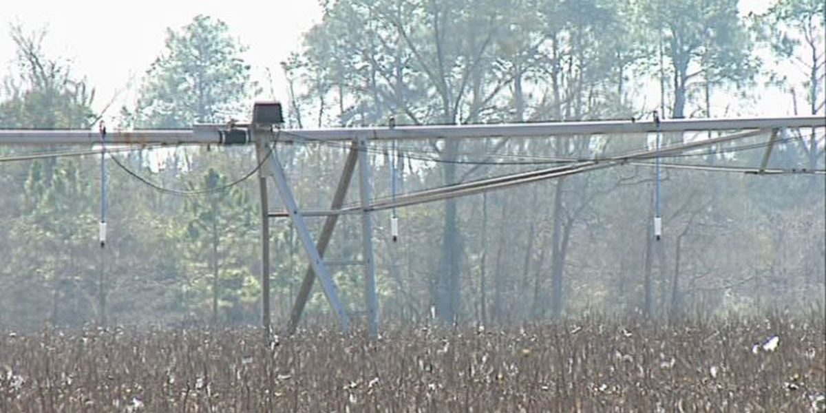 Fl. lawyers take aim at Southwest Ga. farmers in continuing water wars