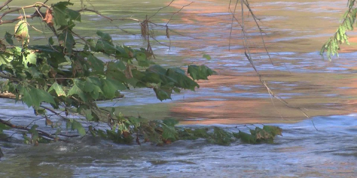 Flint Riverkeeper prepares to open store in downtown Albany