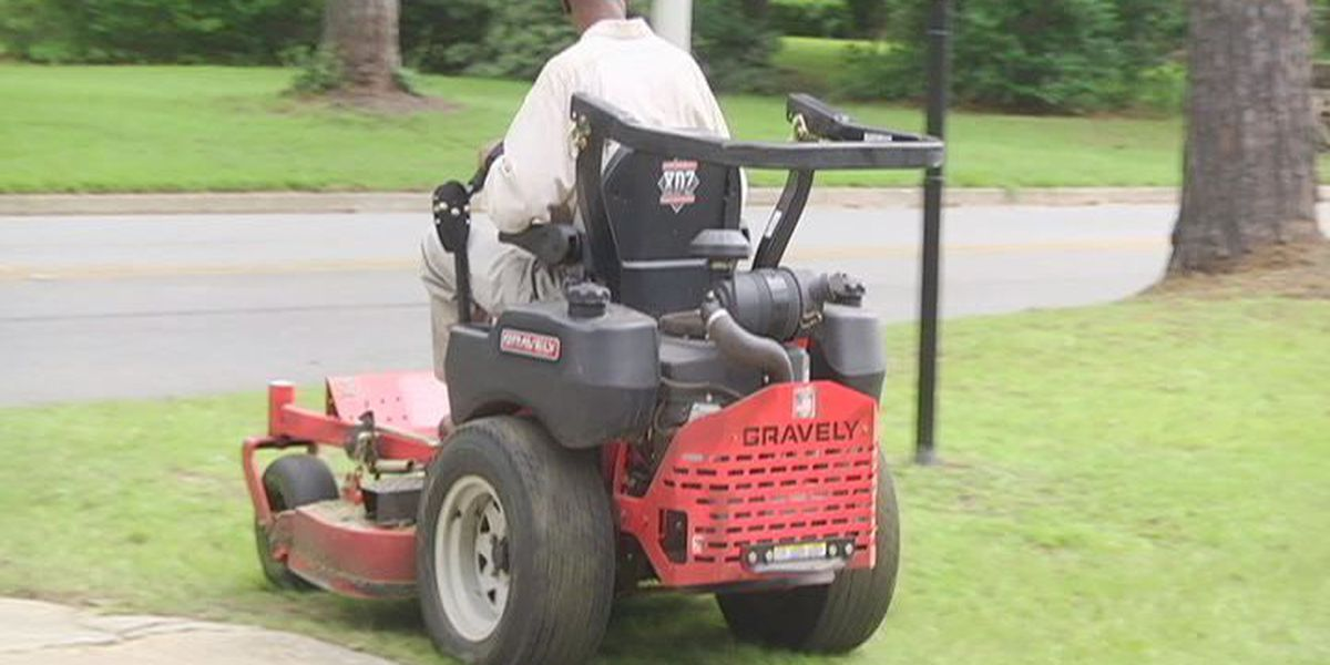 Thieves love to steal power equipment