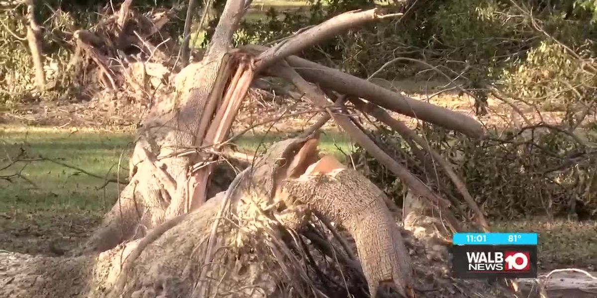 UGA Tifton set to hold agriculture disaster session