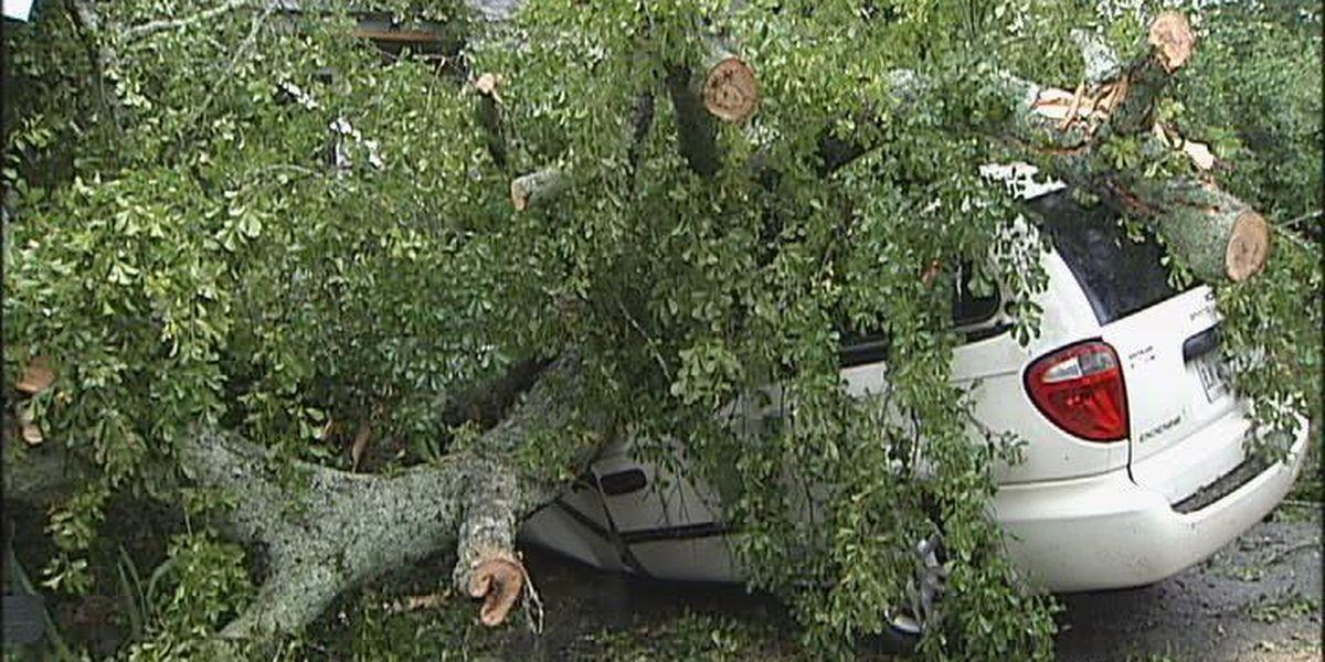 Many Georgia counties sustain weather damage