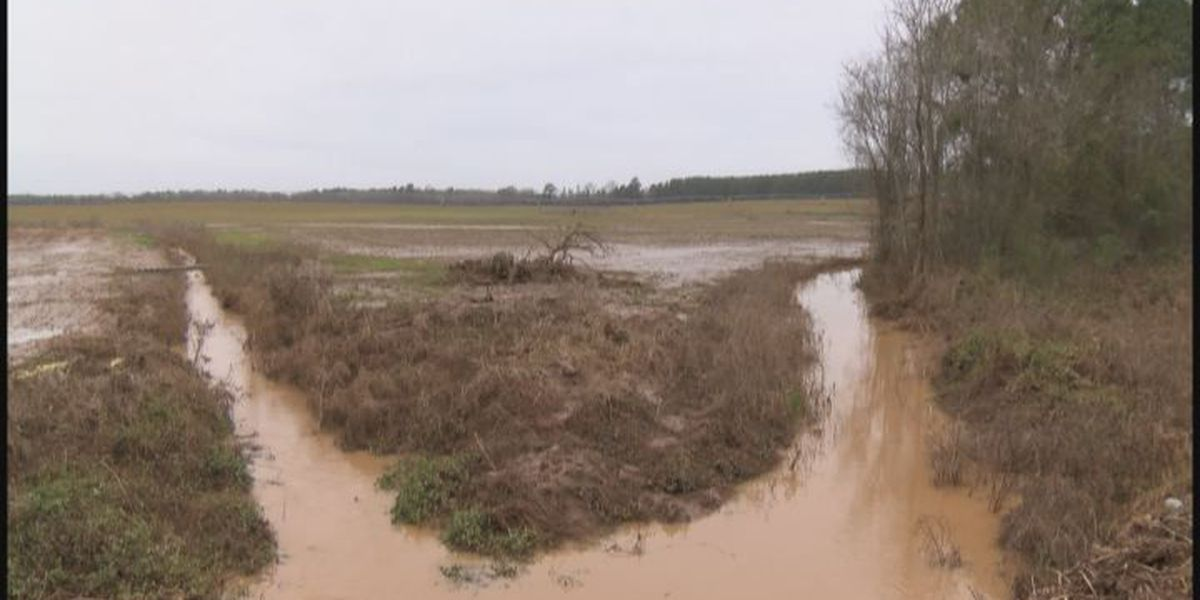 Flooded roads reopen