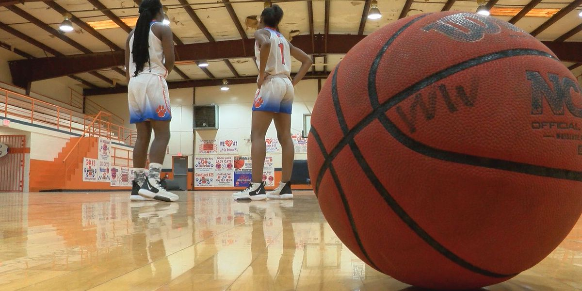 Westwood puts two Lady Wildcats on the McDonald's All-America nominee list