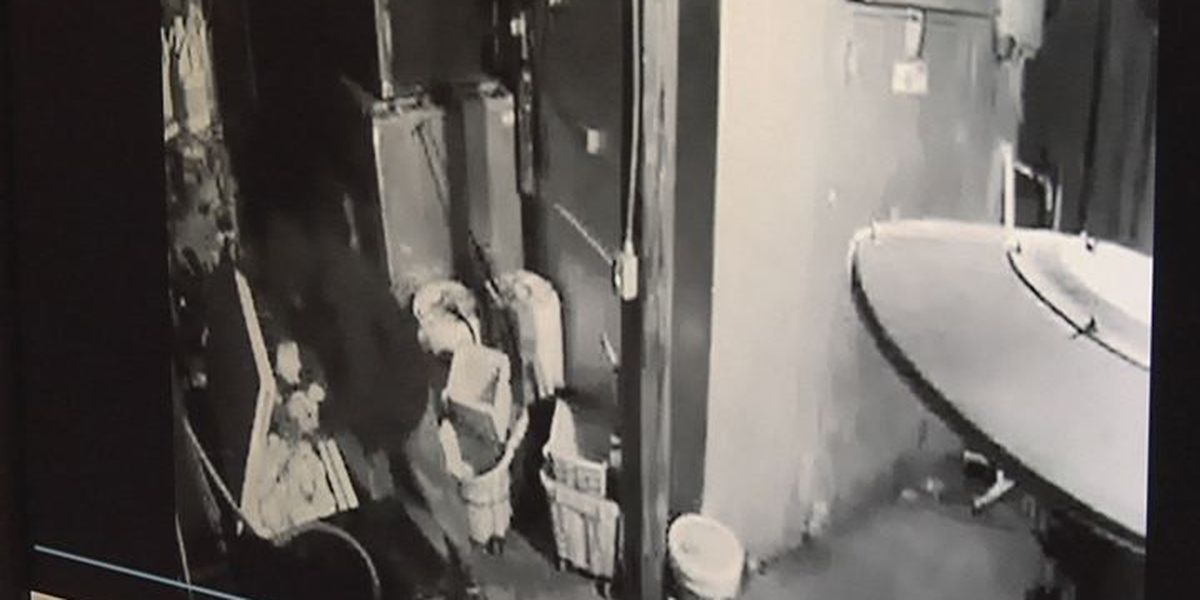Caught on camera: two suspects try to steal frozen food