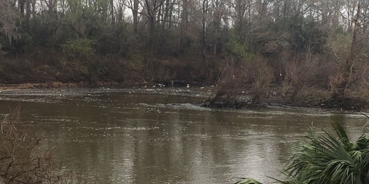 Test results from Flint River foam shows no evidence of spill or discharge