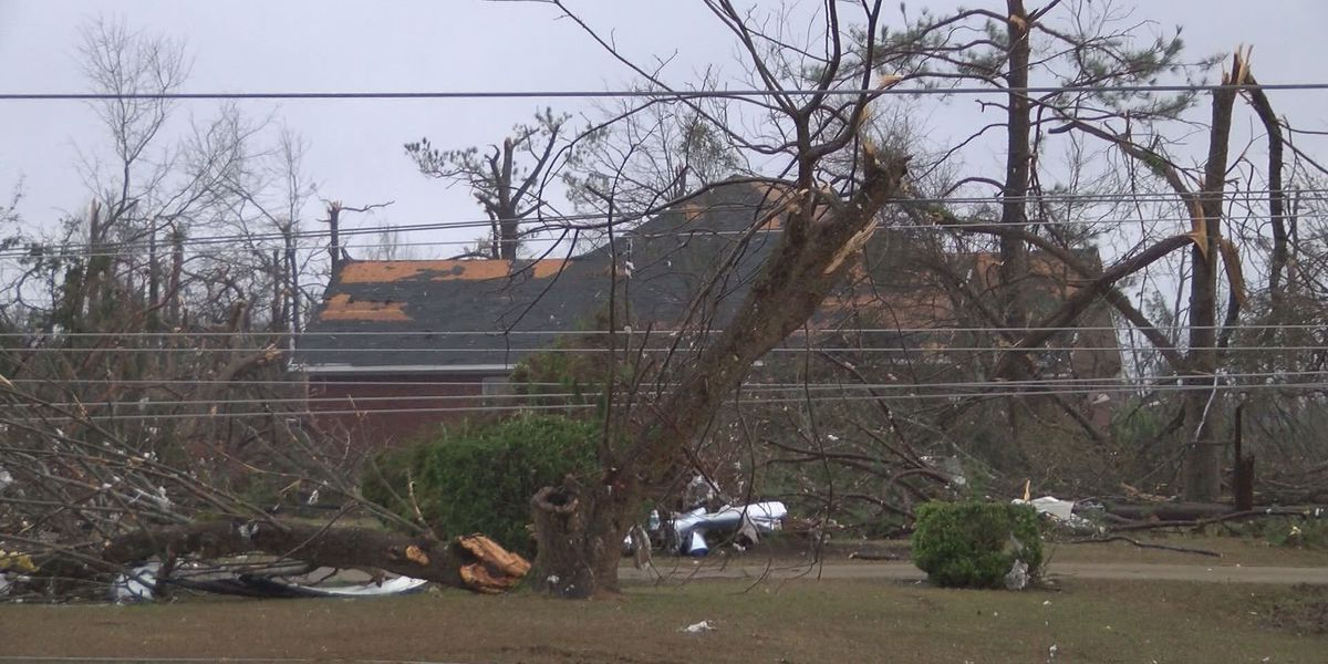 NWS upgrades Dougherty, Worth and Turner County tornado to EF-3