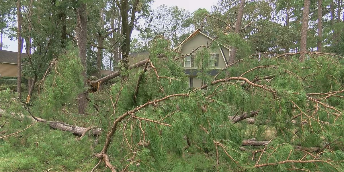 Millions approved in loans to help families affected by Hurricane Michael
