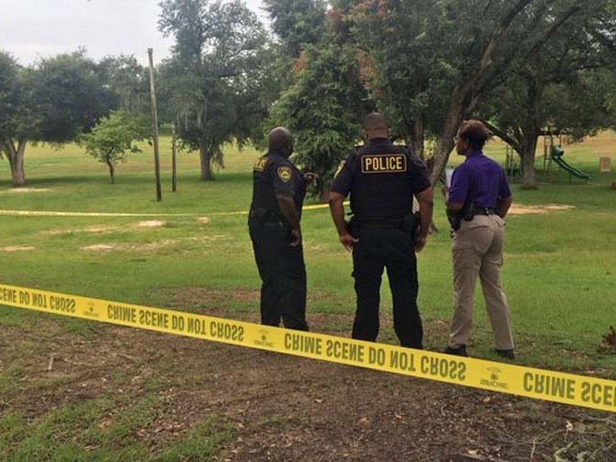 Body found at Hilsman Park
