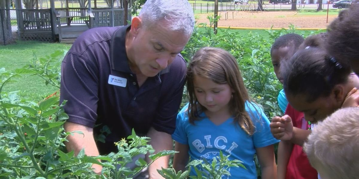 YMCA teaches kids life lessons with community garden
