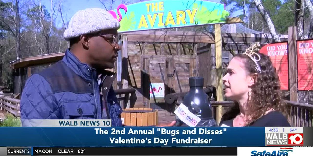 "The 2nd Annual ""Bugs and Disses"" Valentine's Day Fundraiser"