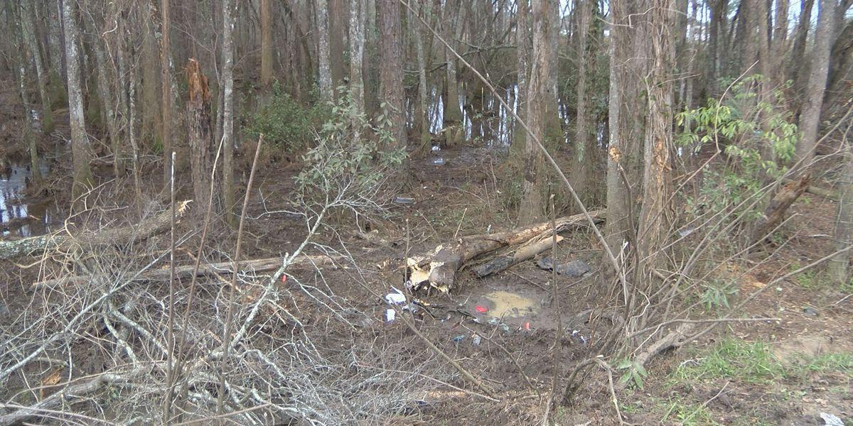 Mother of boy killed in Berrien Co. crash identified