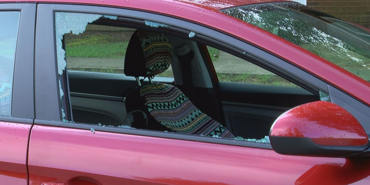 Albany Police warns people of steady car break-ins