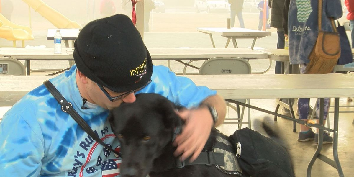 Race raises funds for service dogs