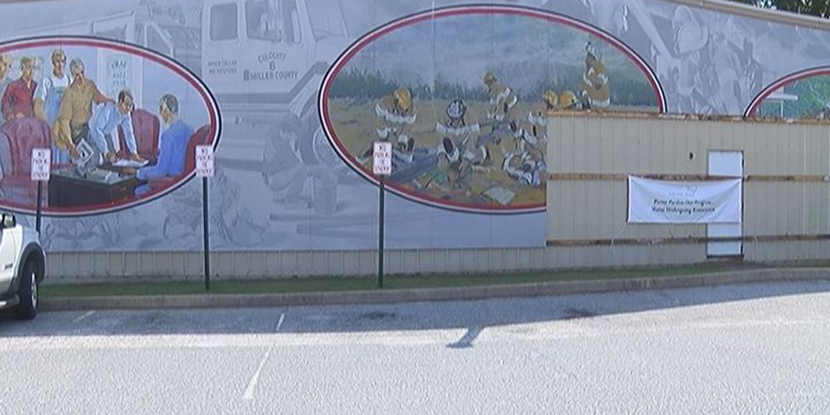 Colquitt needs help with damage mural
