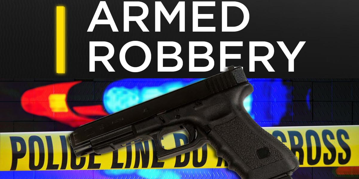 Albany Police on the hunt for armed robbery suspect