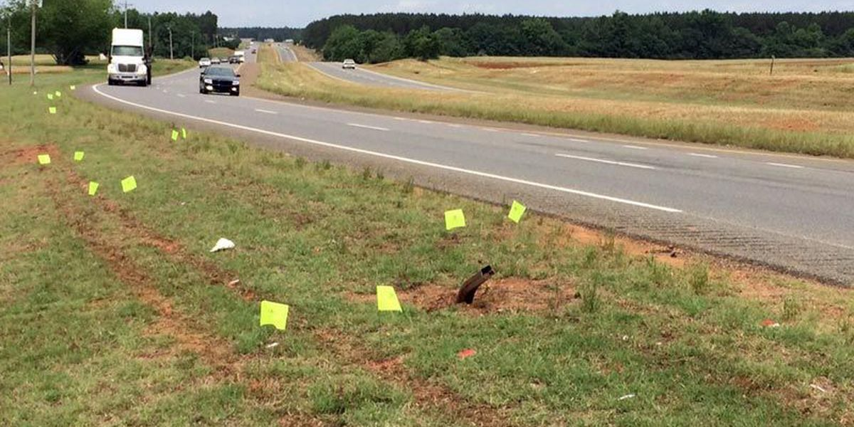 GSP releases name of second grader killed in wreck