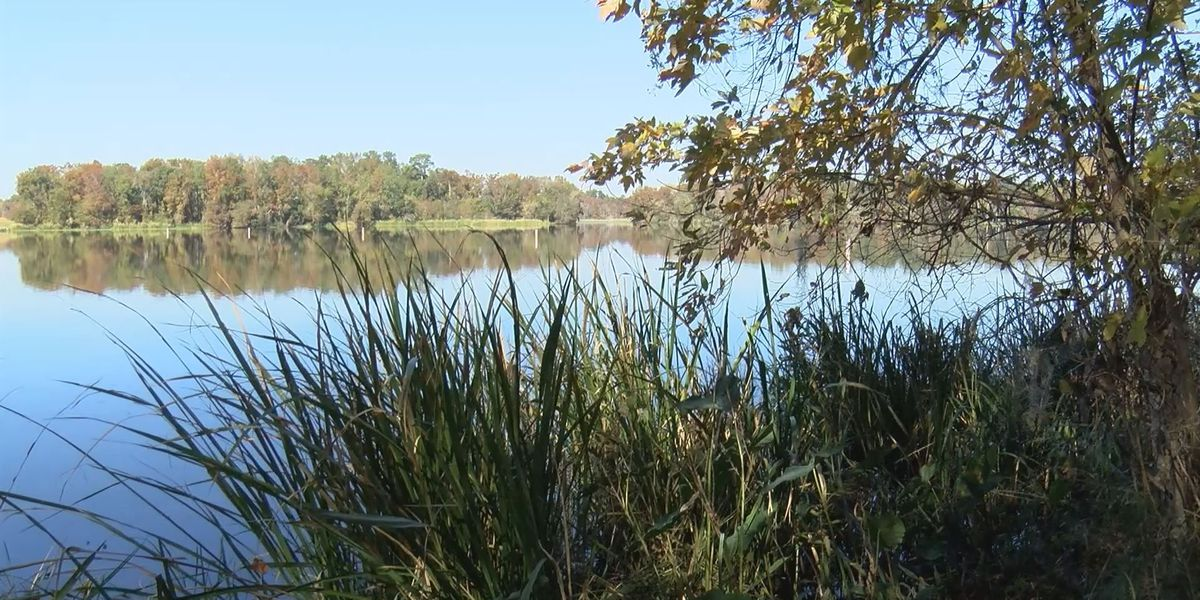 Waterfront property donated to Albany has 'many possibilities'