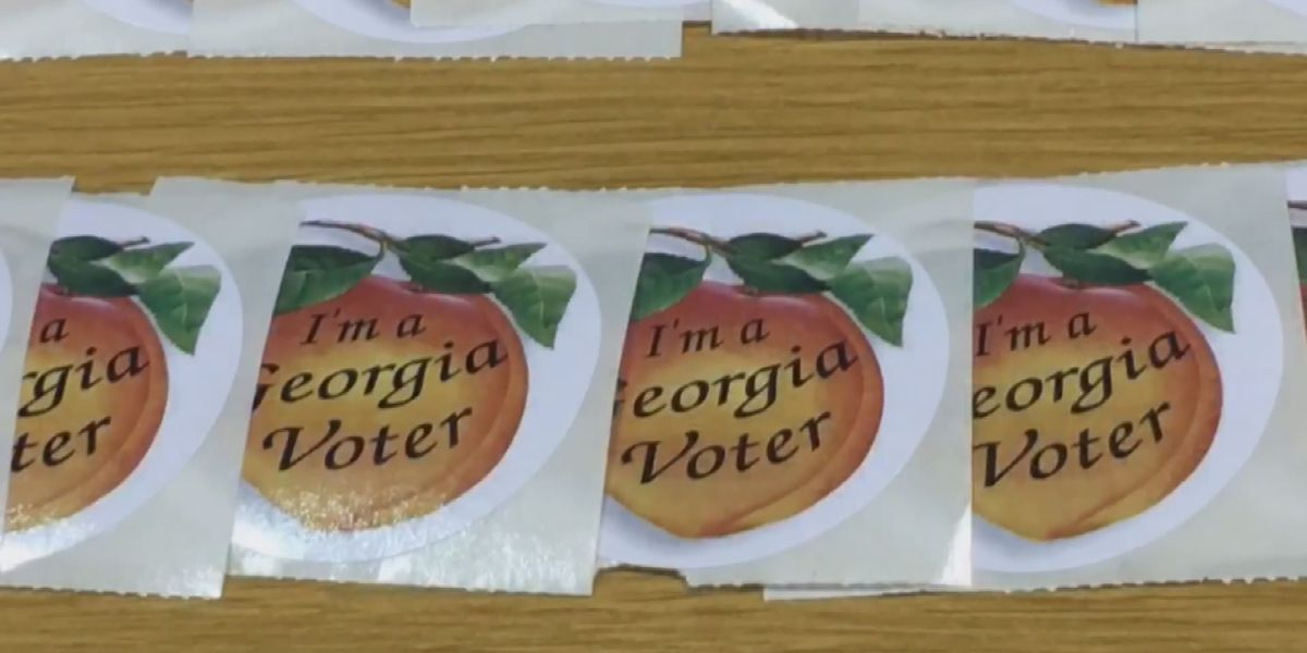 Federal judge puts pause on Georgia voter roll purges