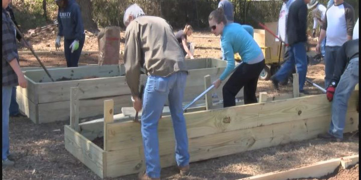 Albany church gives back to the community