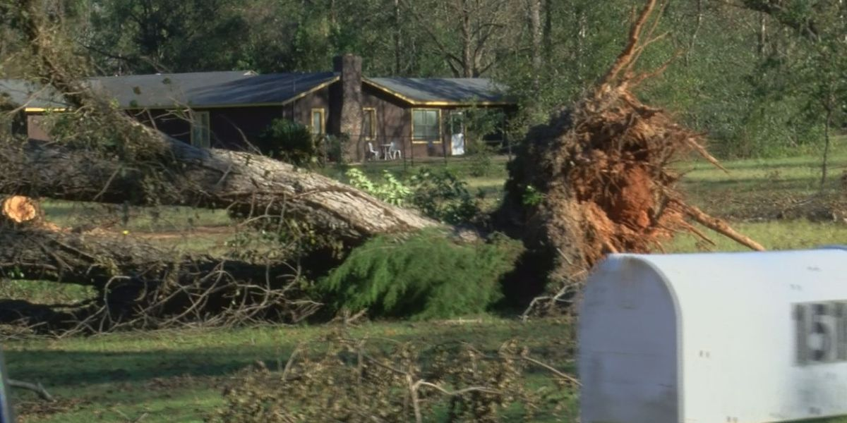 Dougherty Co. Commissioner on Hurricane Michael storm relief