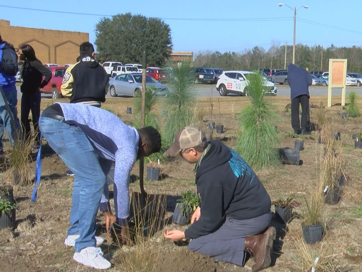 Thomas County Central students build their own forest